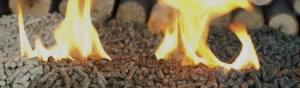 Biomass Wood Pellets Image